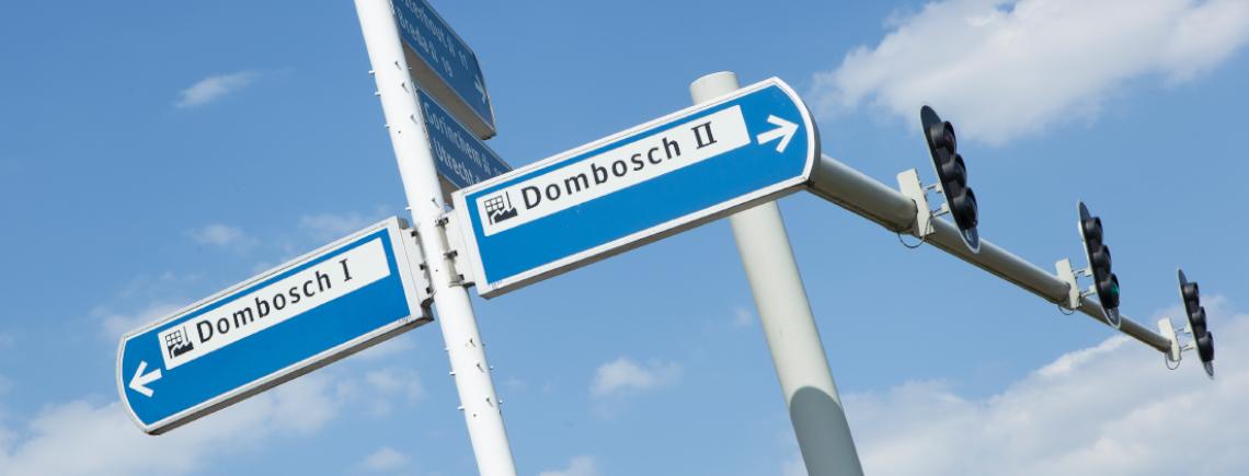 Slide Dombosch.jpg